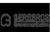 pleiadi_portfolio_logo_gerebros